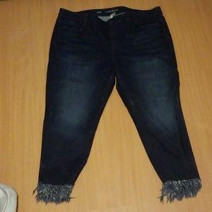 Lane Bryant skinny jeans size 24
